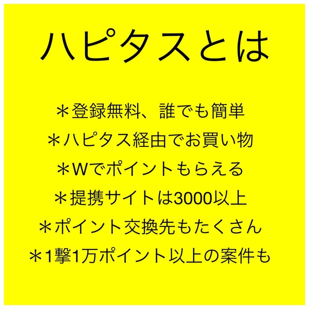 f:id:milerchukimi:20190130194719j:image