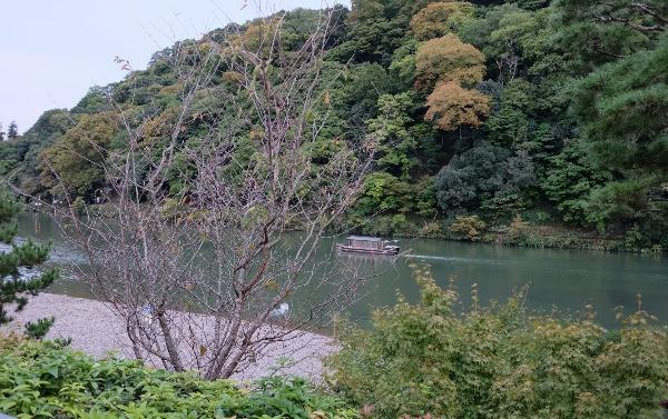 10月下旬の嵐山と桂川