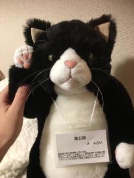 f:id:milksuki999:20170311180422p:plain