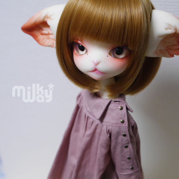 f:id:milkyway77ao:20180929171051j:plain