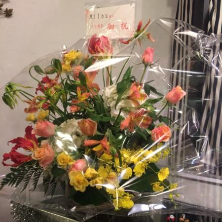 f:id:milou-blog:20151102233028j:image