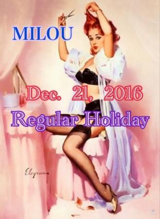 f:id:milou-blog:20161220195615j:image