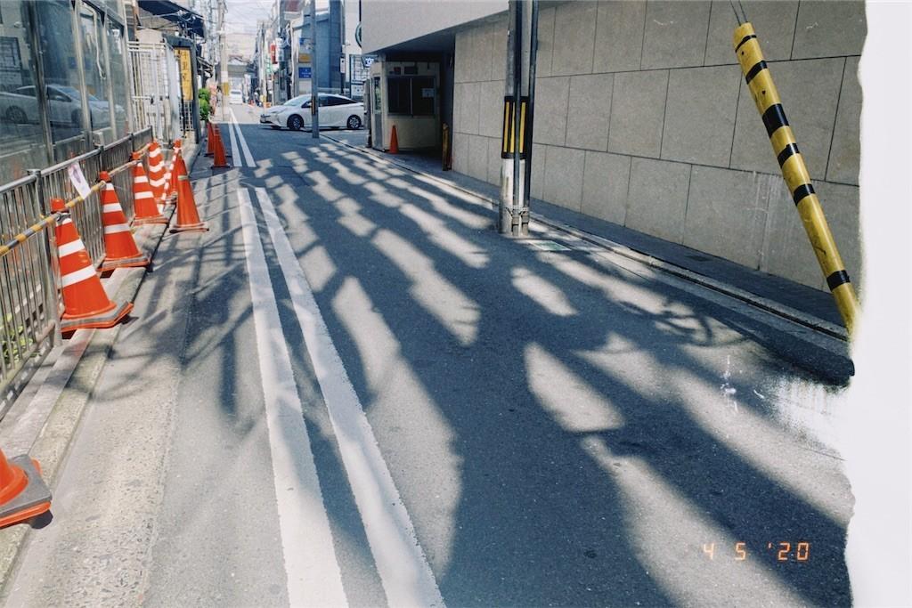 f:id:milou-blog:20200405221324j:image