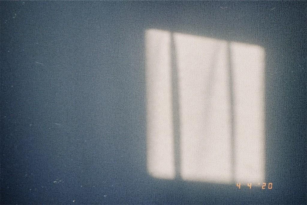 f:id:milou-blog:20200405221328j:image