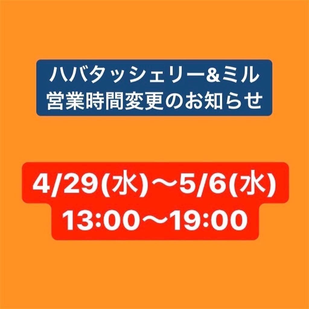 f:id:milou-blog:20200501030232j:image