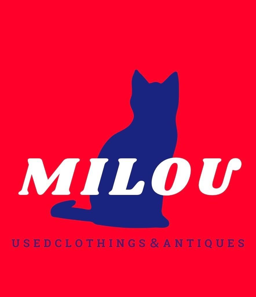 f:id:milou-blog:20210219230216j:image