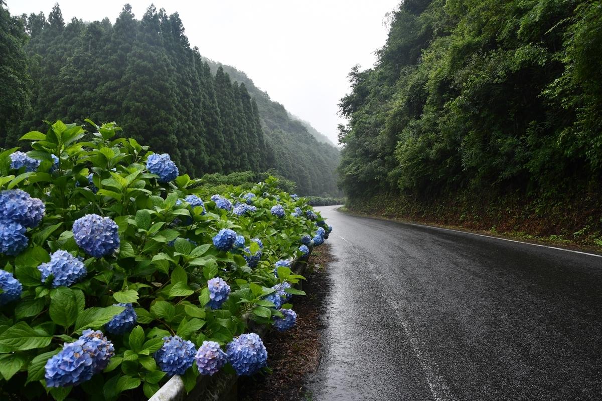 f:id:mimasaka-satoyama:20200625120037j:plain