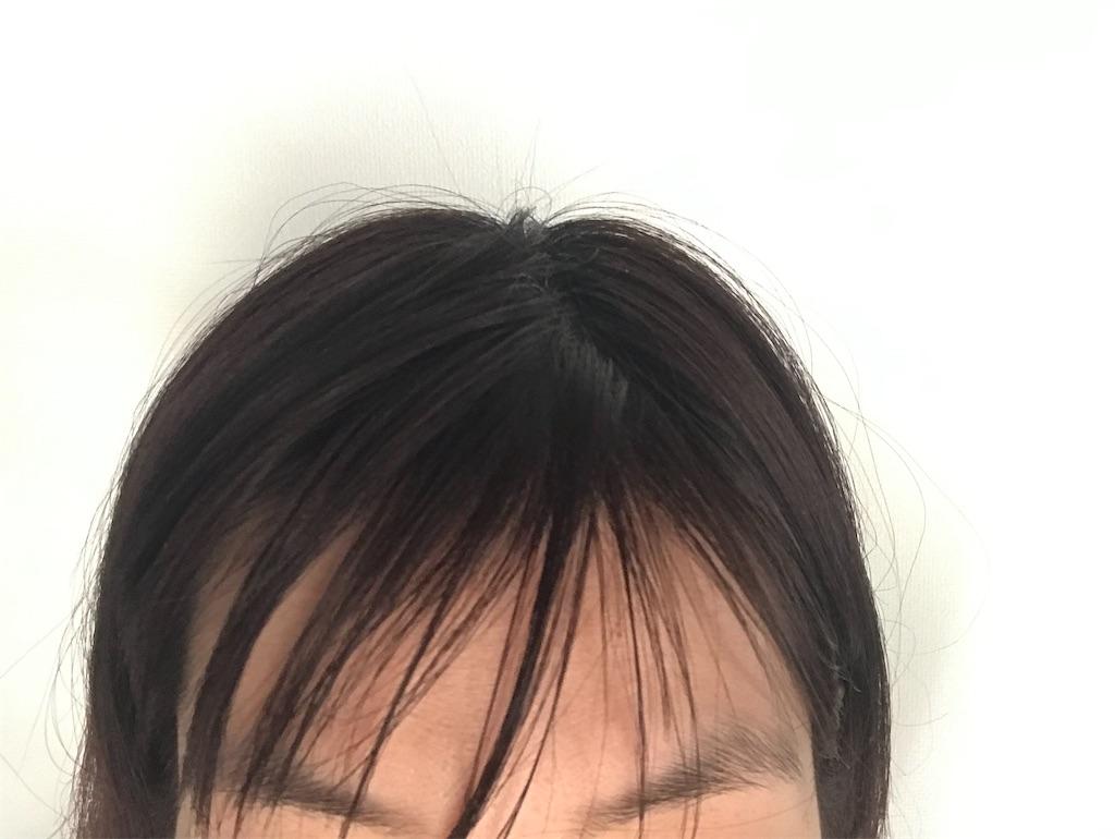 f:id:mimeca:20210514145441j:image