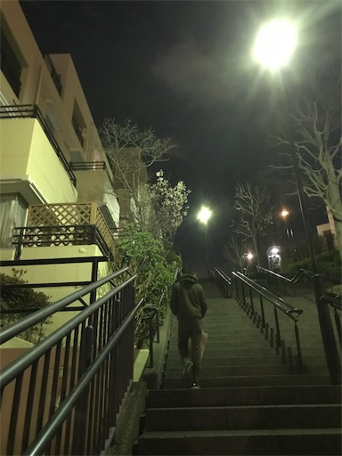 f:id:mimeyama:20190315205407j:image