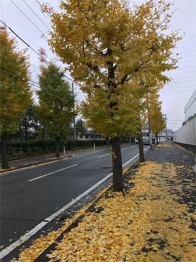 f:id:mimeyama:20191126094415j:image