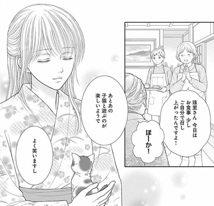 f:id:mimi_shiro:20190226192501j:plain