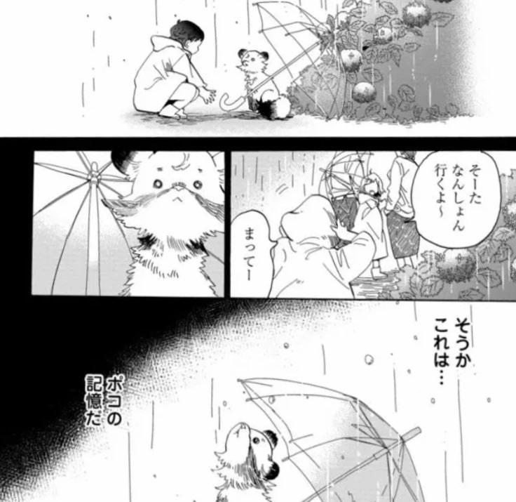 f:id:mimi_shiro:20191014191020j:plain
