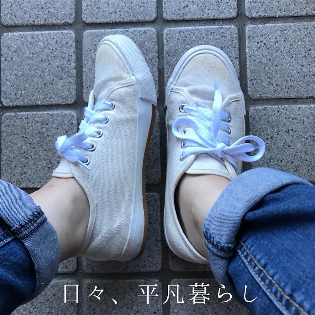 f:id:mimimiwo330:20161014220615j:image