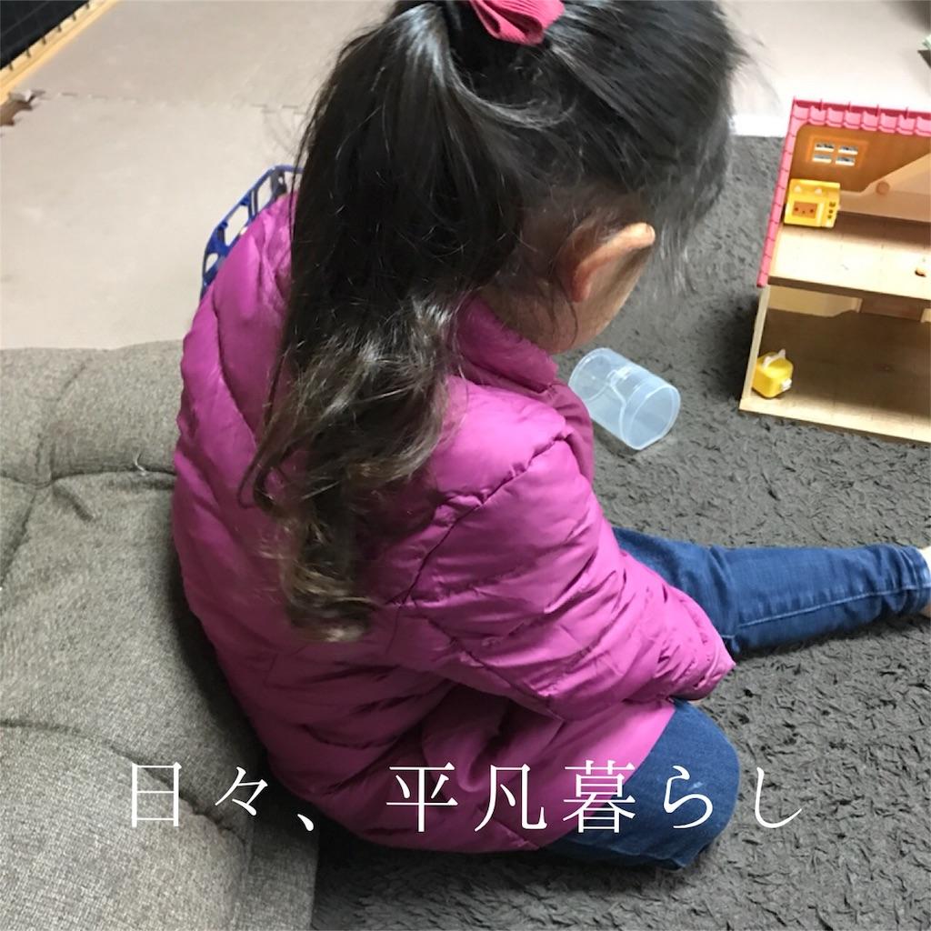 f:id:mimimiwo330:20170103205855j:image