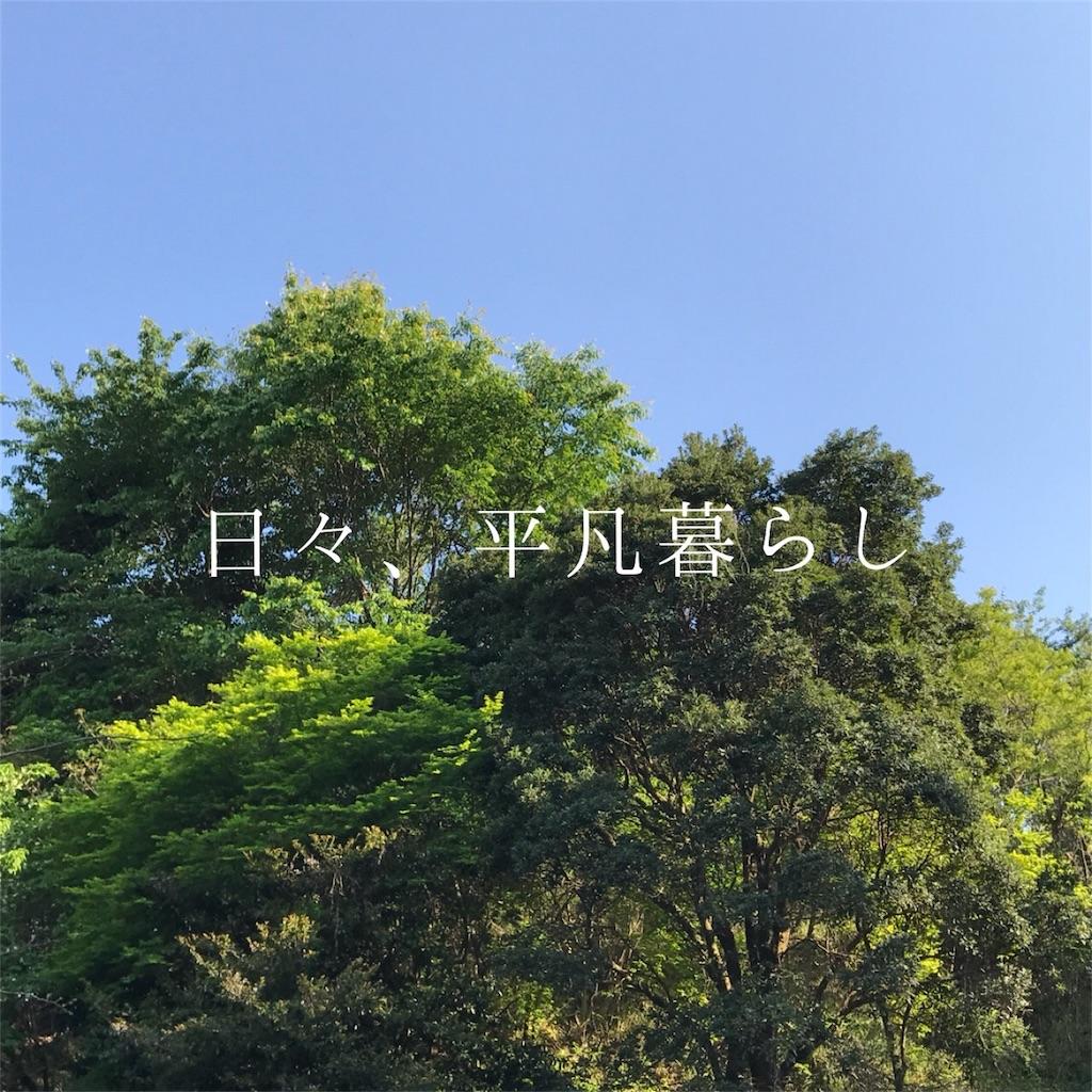 f:id:mimimiwo330:20170617205422j:image