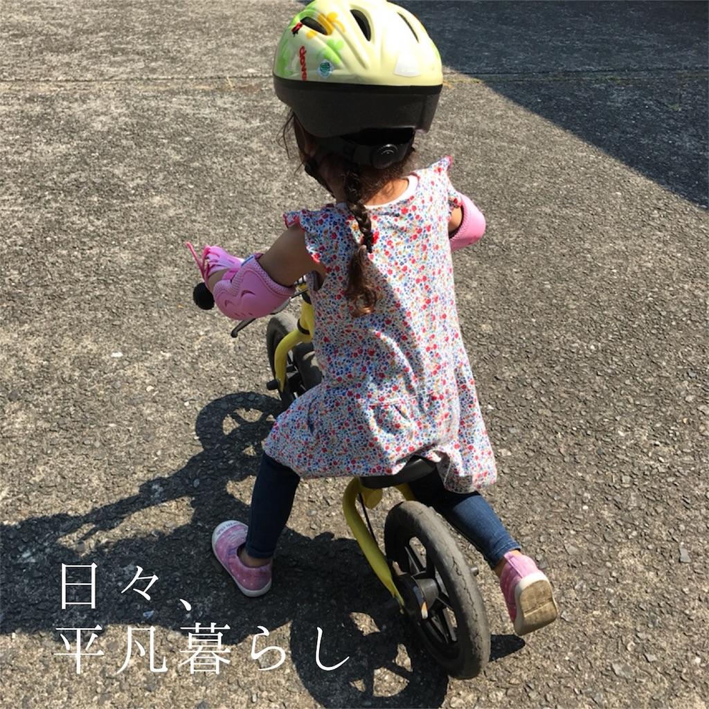 f:id:mimimiwo330:20170623054837j:image
