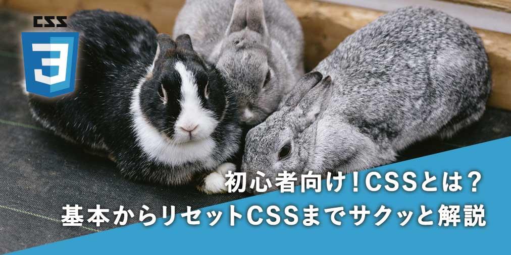 初心者向け!CSSとは?〜CSSの基本からリセットCSSまでサクッと解説〜