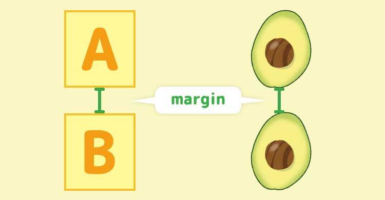 marginをアボカドに例えてみた図