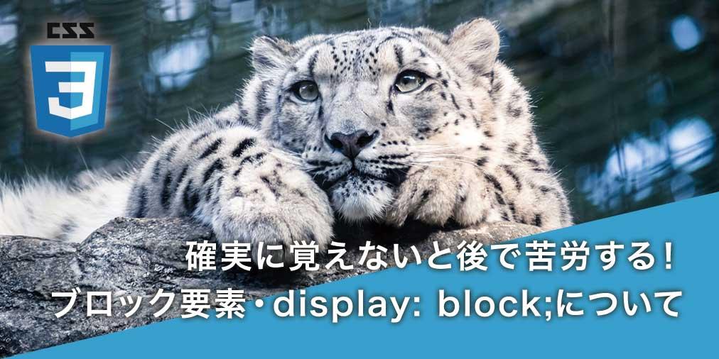 【CSS初心者入門】ブロックレベル要素、display: block について3分で解説!