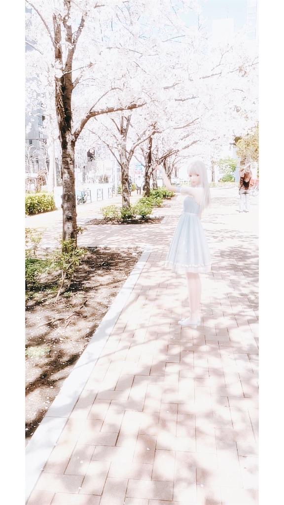 f:id:mimiura:20210529124505j:image