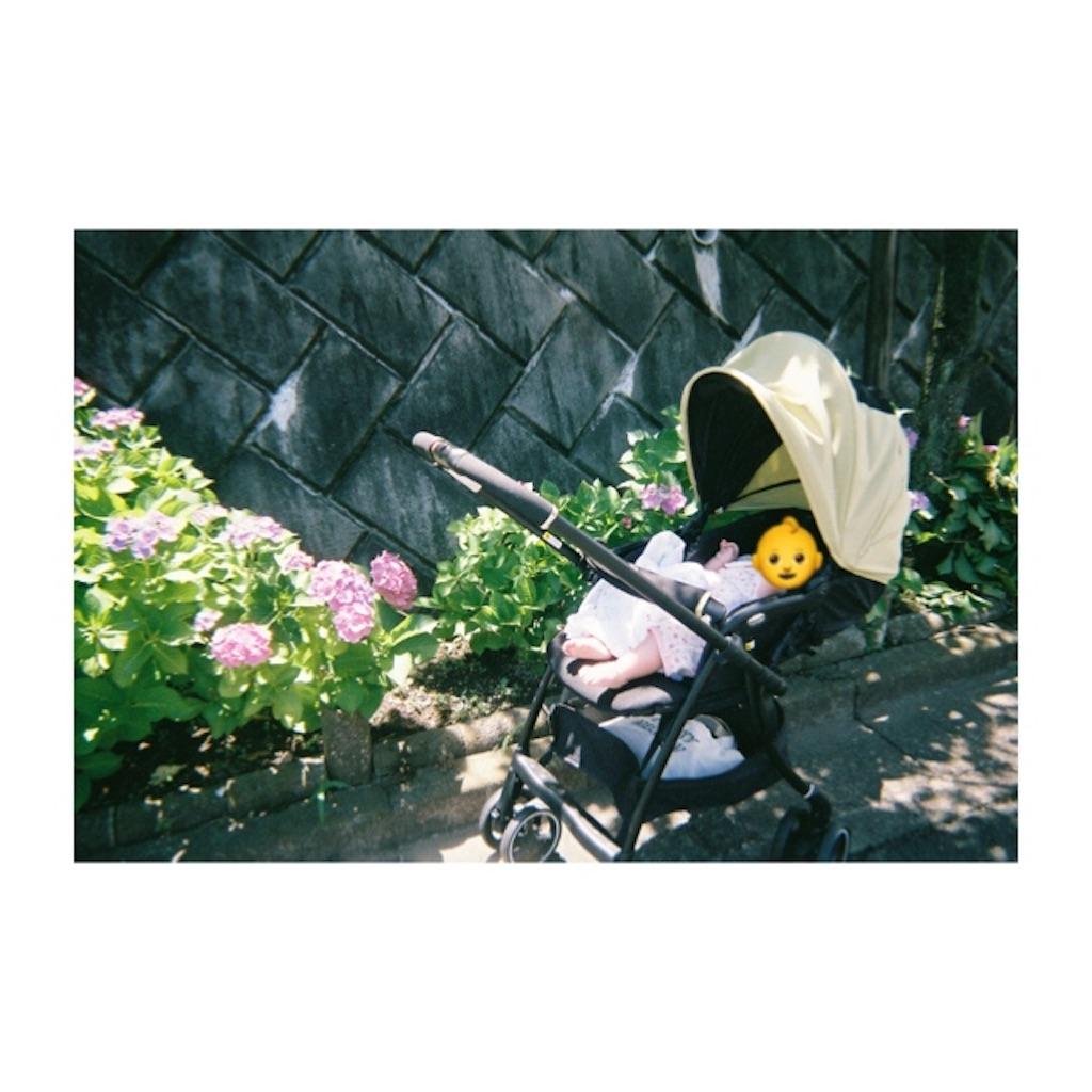 f:id:mimiwaru:20180719092137j:image
