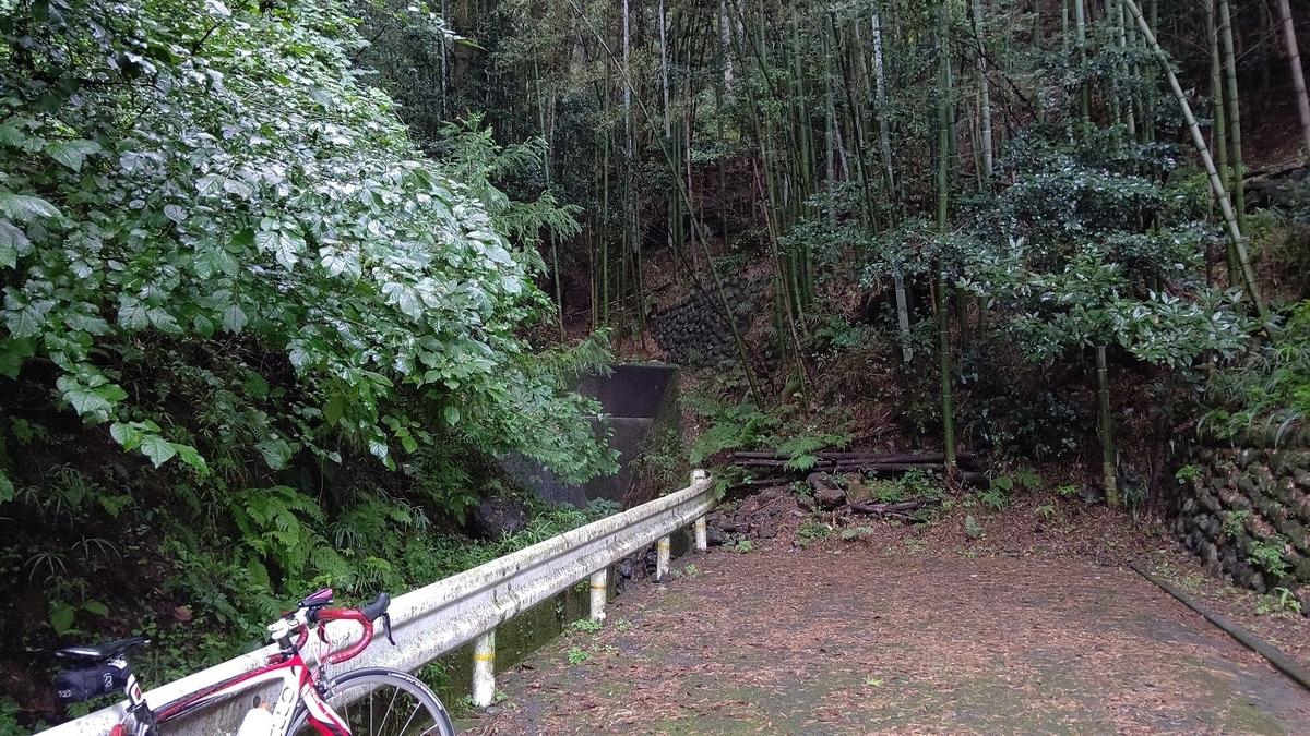 旧道は竹やぶで行き止まりに