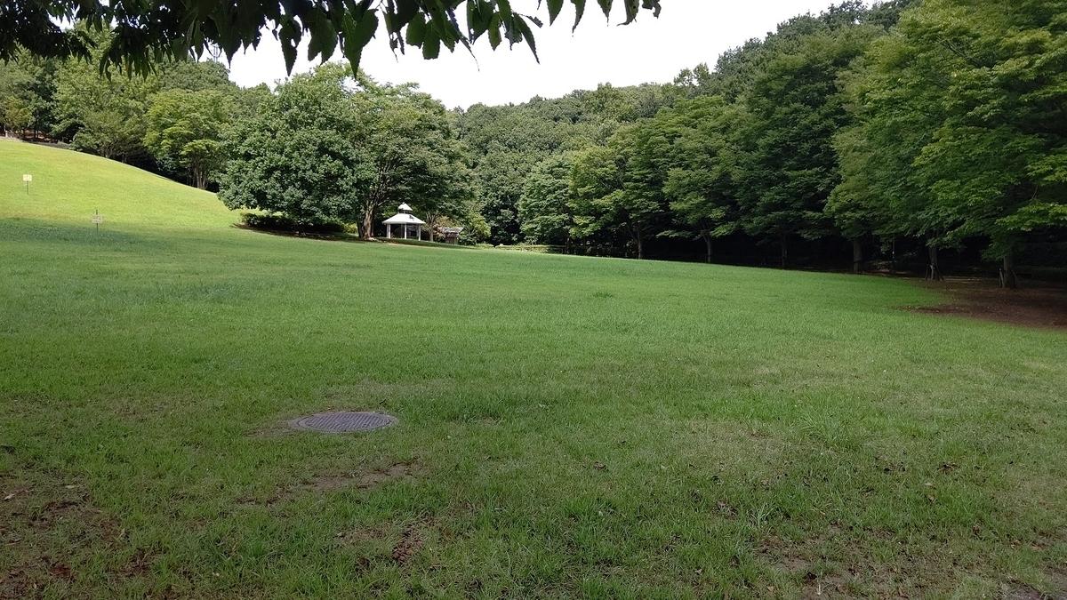 真光寺公園