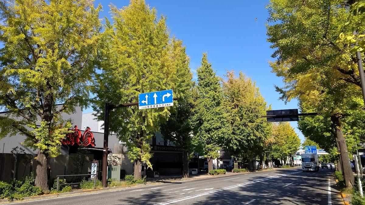 甲州街道 銀杏並木 八王子いちょう祭り