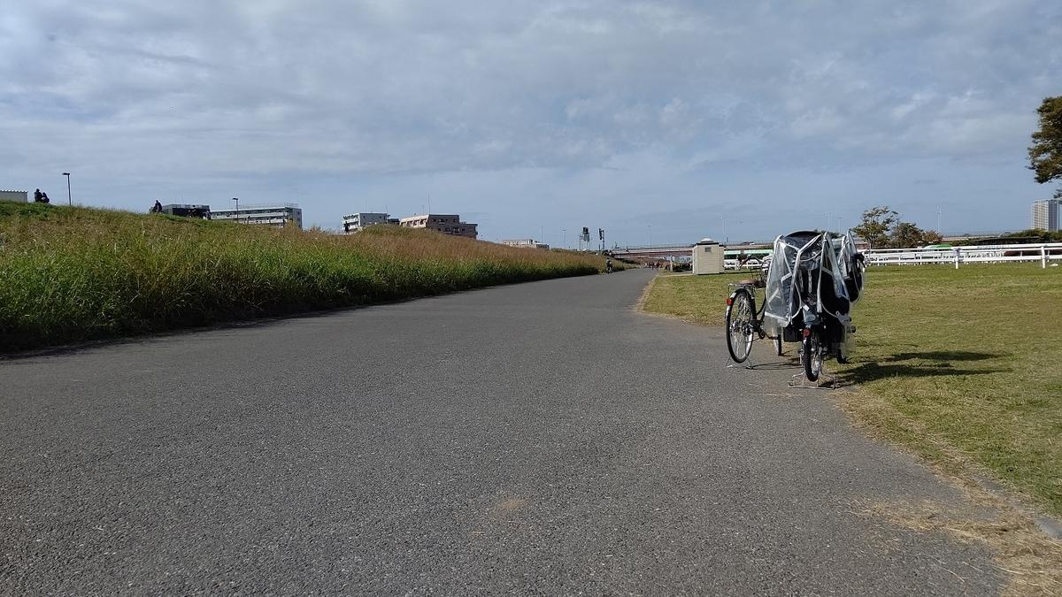 江戸川 サイクリングロード 河川敷