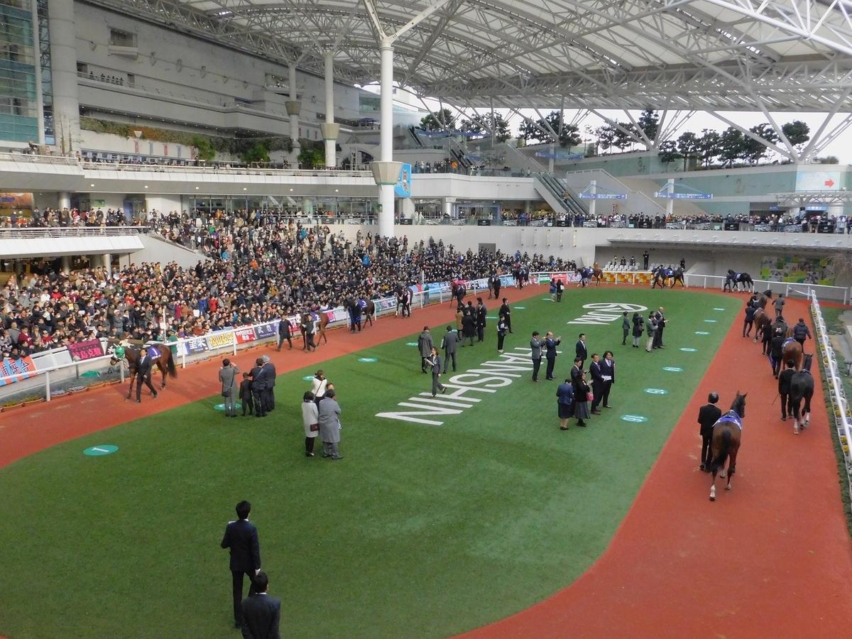競馬,阪神競馬場,マイルチャンピオンシップ,マイルCS,keiba,グランアレグリア