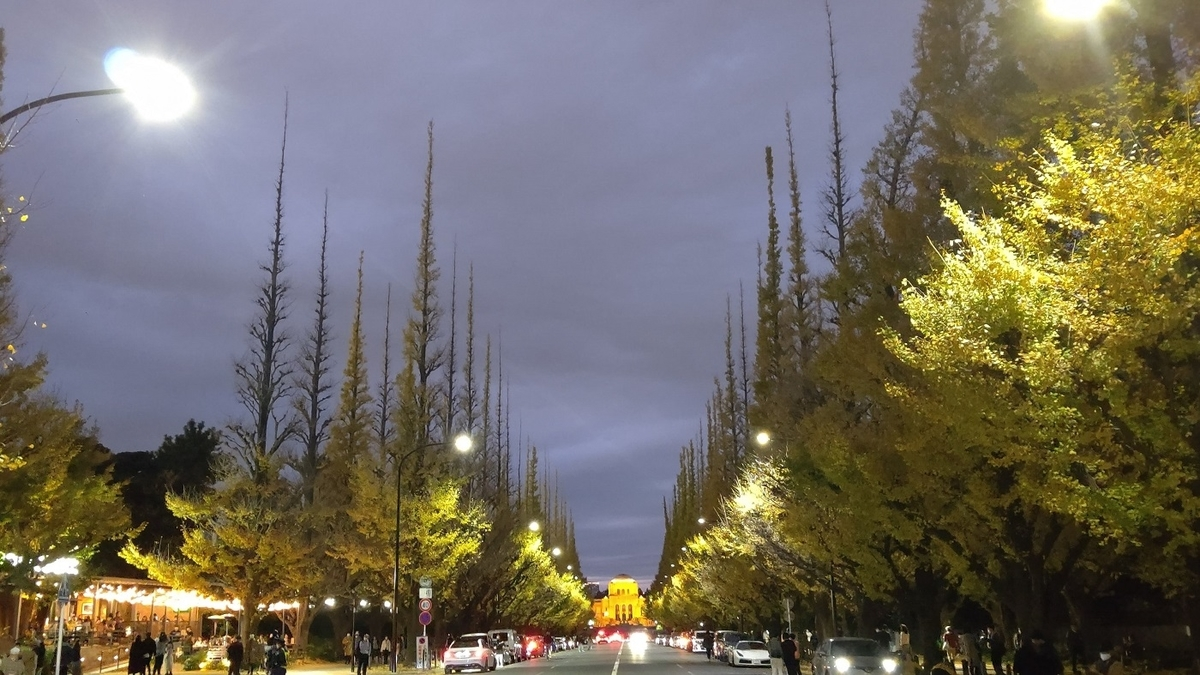 神宮外苑 イチョウ並木 ライトアップ
