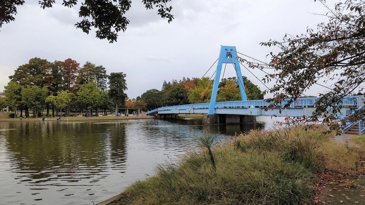 水元公園 水元大橋