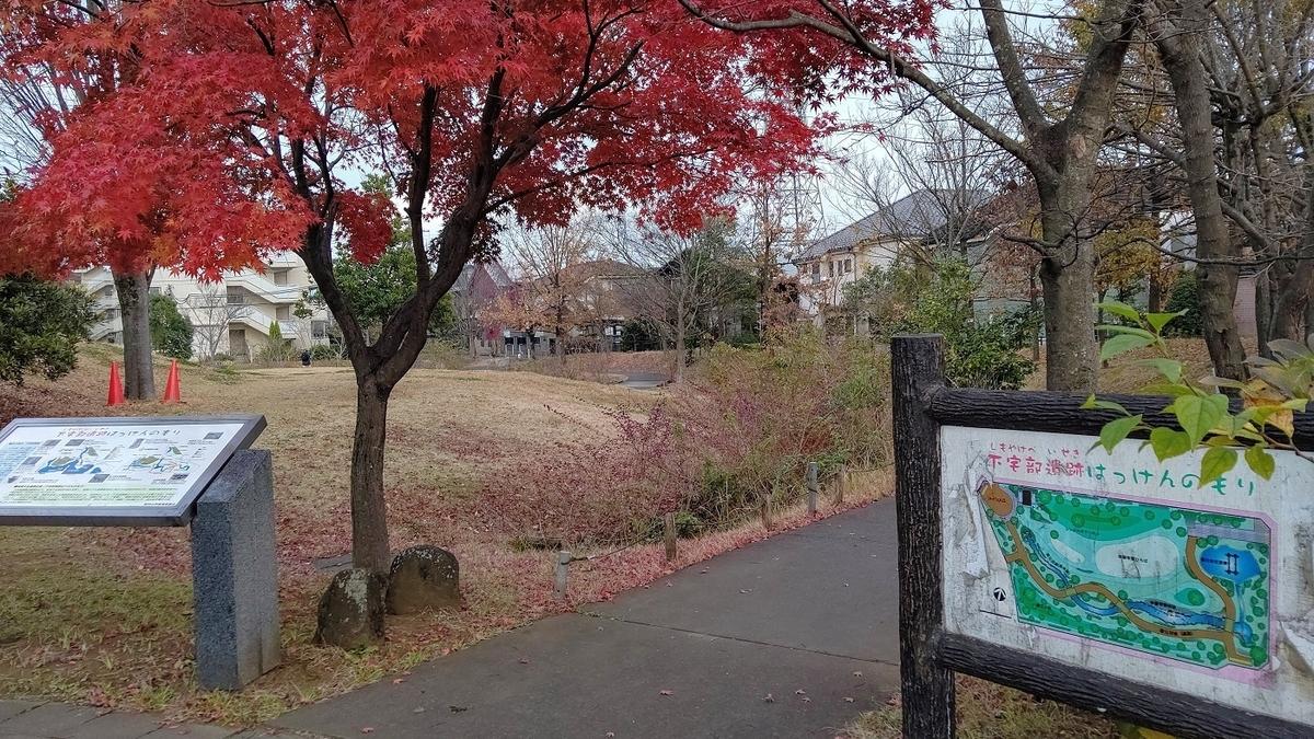 下宅部遺跡はっけんのもり 遺跡 公園 紅葉
