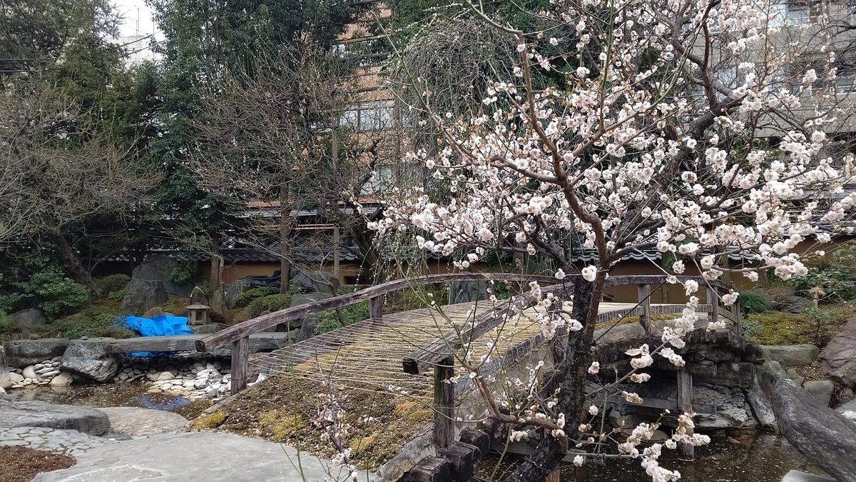 本殿 左側 池 日本庭園 梅園