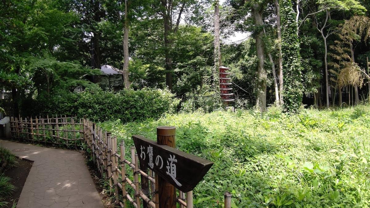 自転車 旅 東京五輪 聖火リレー 5日目 国分寺 お鷹の道 五重塔
