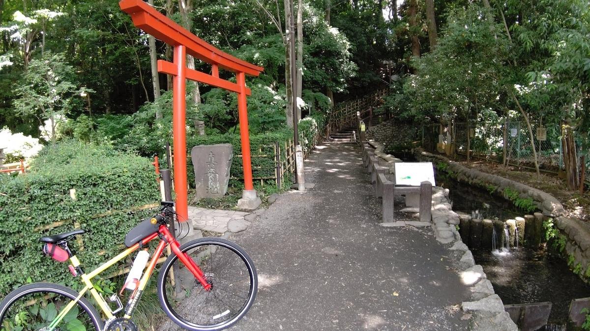 自転車 旅 東京五輪 聖火リレー 5日目 国分寺 真姿の池湧水群