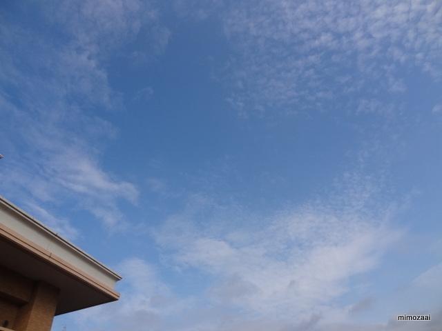 f:id:mimozaai:20160727142228j:plain