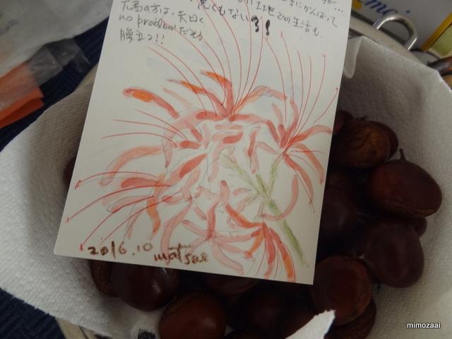 f:id:mimozaai:20161007203451j:plain