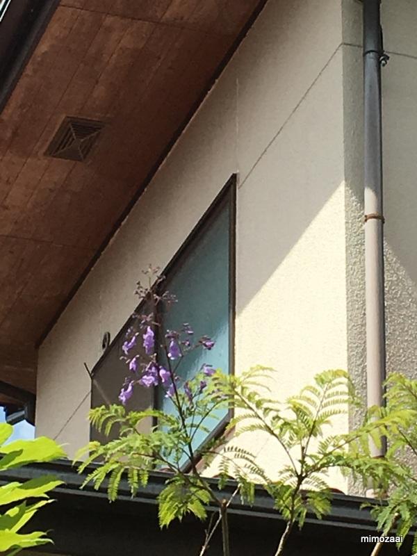 f:id:mimozaai:20170617195738j:plain