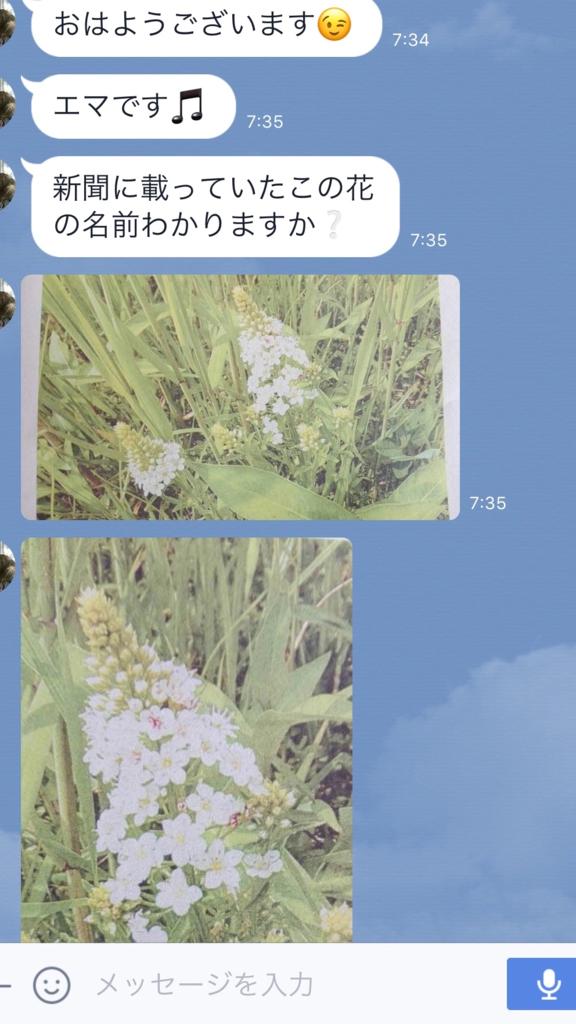 f:id:mimozaai:20170628191914p:plain