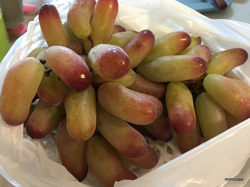 f:id:mimozaai:20170905194310j:plain
