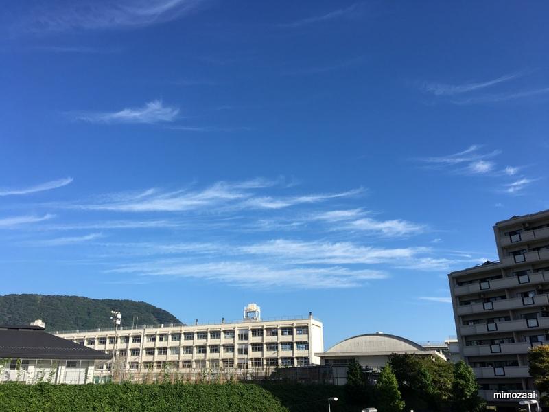 f:id:mimozaai:20170921211256j:plain
