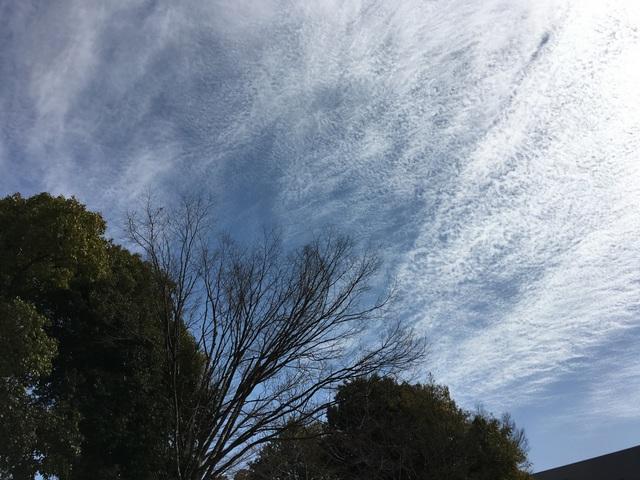 f:id:mimozaai:20180218200440j:plain
