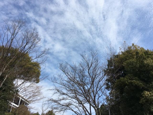 f:id:mimozaai:20180218200451j:plain