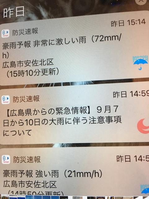 f:id:mimozaai:20180909194650j:plain