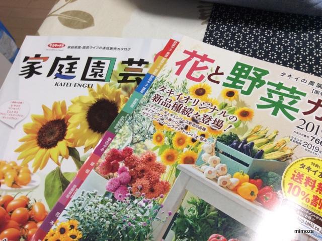 f:id:mimozaai:20181218193451j:plain
