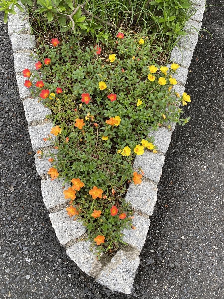 f:id:mimozaai:20200725194054j:plain
