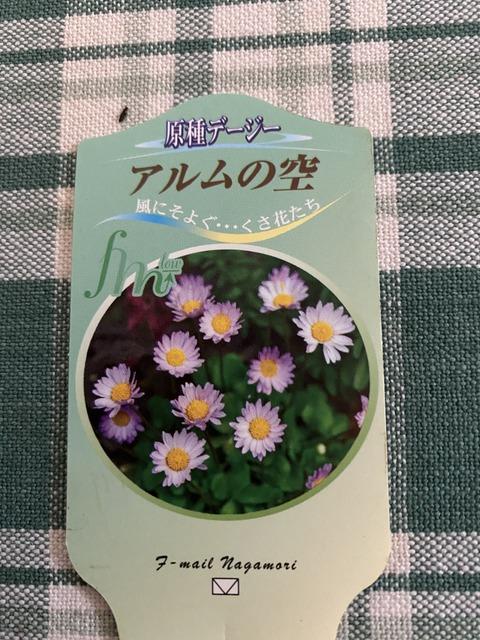 f:id:mimozaai:20210124204912j:plain