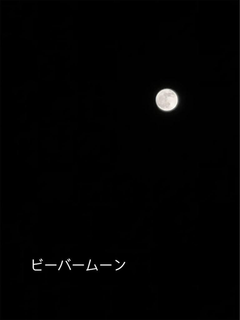 f:id:mimu_365:20201201191454j:image