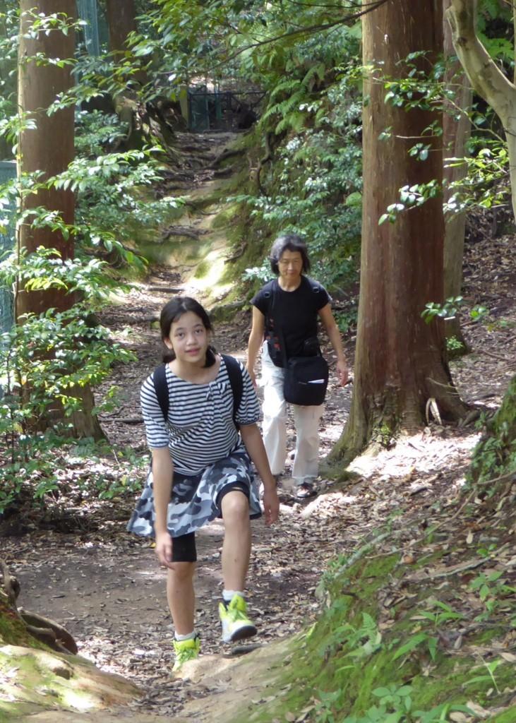 f:id:minami-no-neko:20150703015914j:plain